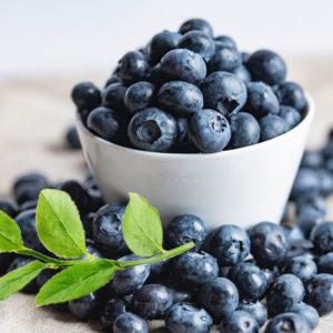 pärontorkade blåbär